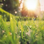Energys April Horizon Scan: Net zero ambitions, Low Carbon Jobs boost – and more…